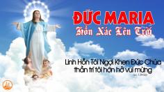 15.8.2019 – Lễ Đức Mẹ lên trời