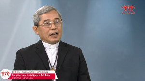 VIDEO: ĐGM Louis Nguyễn Anh Tuấn: vấn đề ly hôn và chuẩn hôn nhân khác đạo