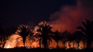 Các trao đổi bên lề THĐGM về Amazon