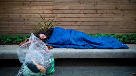 Alfie, thiên thần bé nhỏ của người vô gia cư ở thành phố Edinburgh