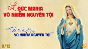 08.12.2019 - Đức Mẹ Vô nhiễm nguyên tội