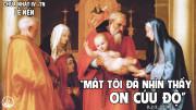 CÁC BÀI SUY NIỆM LỜI CHÚA LỄ DÂNG CHÚA GIÊSU TRONG ĐỀN THÁNH