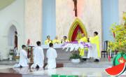 Tin Ảnh: Gx. Lam Sơn: Thánh lễ minh niên- Cầu bình an cho năm mới 2020