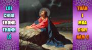 BẢN VĂN BÀI ĐỌC TRONG THÁNH LỄ TUẦN I MÙA CHAY - NĂM A