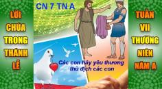 BẢN VĂN BÀI ĐỌC TRONG THÁNH LỄ TUẦN VII THƯỜNG NIÊN A