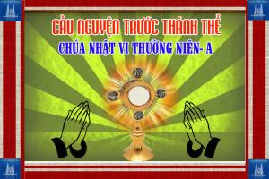 Cầu nguyện trước Thánh Thể- Ngày 16.02.2020 – Chúa nhật VI Thường niên – Mt 5,17-37