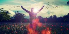 Những điều mang lại cuộc sống hạnh phúc