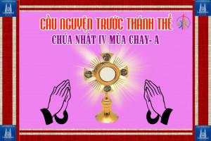Cầu nguyện trước Thánh Thể- Ngày 22.03.2020 – Chúa nhật IV mùa Chay – Ga 9,1-41