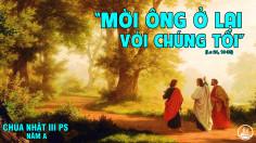 CÁC BÀI SUY NIỆM LỜI CHÚA CHÚA NHẬT III PHỤC SINH- A