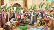 Lễ Lá trong mùa đại dịch: Nhành lá cọ chính là các việc lành