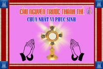 Cầu nguyện trước Thánh Thể- Ngày 17.05.2020 – Chúa nhật VI Phục sinh – Ga 14,15-21