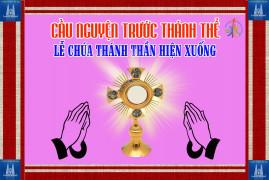 Cầu nguyện trước Thánh Thể- Ngày 31.05.2020 – Lễ Chúa Thánh Thần hiện xuống – Ga 20,19-23
