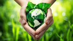 Tòa Thánh phát động Năm sinh thái