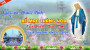 TRỰC TUYẾN: Gx. Phước Tỉnh: Bế mạc Tháng Hoa kính Đức Mẹ - 17g15 Chúa nhật, ngày 31.5.2020