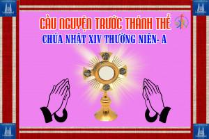 Cầu nguyện trước Thánh Thể- Ngày 05.07.2020 – Chúa nhật XIV Thường niên – Mt 11,25-30