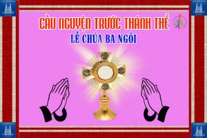 Cầu nguyện trước Thánh Thể- Ngày 07.06.2020 – Lễ Chúa Ba Ngôi – Ga 3,16-18
