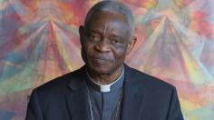 ĐHY Turkson kêu gọi các giám mục Hoa Kỳ tổ chức các giờ cầu nguyện xin ơn tha thứ và chữa lành