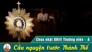 Cầu nguyện trước Thánh Thể- Ngày 02.08.2020 – Chúa nhật XVIII Thường niên – Mt 14,13-21