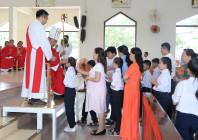 Tin Ảnh: Gx. Phước Bình: Thánh lễ ban Bí tích Thêm sức- Ngày 20.7.2020
