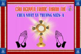 Cầu nguyện trước Thánh Thể- Ngày 12.07.2020 – Chúa nhật XV Thường niên – Mt 13,1-23