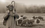 Đức Giê-su Ki-tô – Đường Mục tử nhân lành