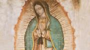 Khai mạc Năm Thánh tu viện Đức Mẹ Guadalupe