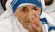 12 câu nói gợi hứng cho cuộc sống hằng ngày từ Mẹ Thánh Têrêsa Calcutta