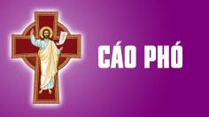 CÁO PHÓ: Ông Cố Phêrô Trần Đình Hoàn (Thân phụ Phó tế Phêrô Trần Đình Lương)