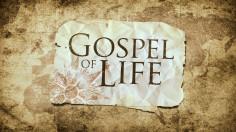 Niềm vui của Tin mừng sự sống