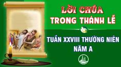 BẢN VĂN BÀI ĐỌC TRONG THÁNH LỄ TUẦN XXVIII THƯỜNG NIÊN – NĂM A