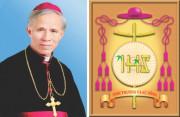 Toà Giám mục Bắc Ninh: Thư Mục vụ Mùa Vọng 2020