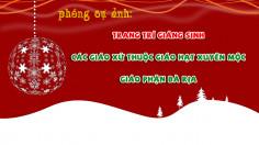 PHÓNG SỰ ẢNH: Trang trí Giáng Sinh các giáo xứ thuộc Giáo hạt Xuyên Mộc - Giáo phận Bà Rịa