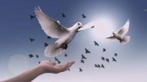 Giáo hội Anh và xứ Wales cử hành Chúa nhật Hòa bình