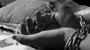 Chuẩn bị Ngày Thế giới lần thứ VII chống buôn người