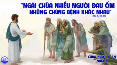 CÁC BÀI SUY NIỆM LỜI CHÚA CHÚA NHẬT V THƯỜNG NIÊN- B
