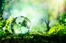 Thư Caritas - Tháng 04/2021: Chăm sóc thiên nhiên, chăm sóc con người
