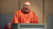 Sứ vụ và các hoạt động của Bộ Giáo dân, Gia đình và Sự sống