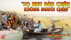 CÁC BÀI SUY NIỆM LỜI CHÚA CHÚA NHẬT XVI THƯỜNG NIÊN-B