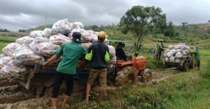 Caritas Đà Lạt: Hơn 255 tấn nông sản hướng về vùng dịch Covid-19