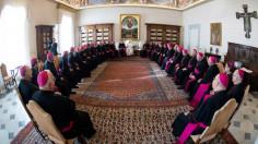 Các Giám mục Hoa Kỳ phát động sáng kiến đối phó với sự phân cực trong xã hội