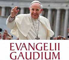 EVANGELII-GAUDIUM21-230x200