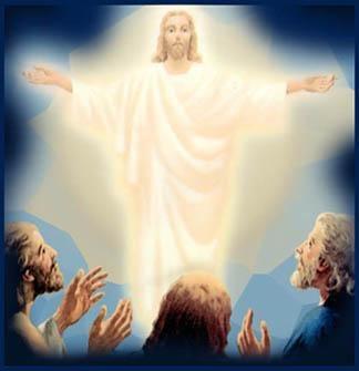 Transfiguration8