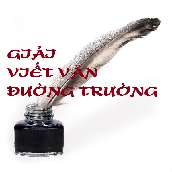 van-dt