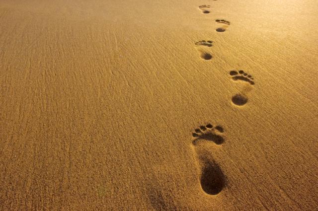 6355495324049144311455714676_footprints-in-sand